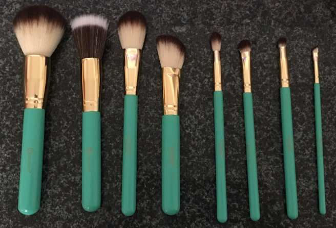 cb584f58cfea Ashley Tisdale Makeup Brushes Review